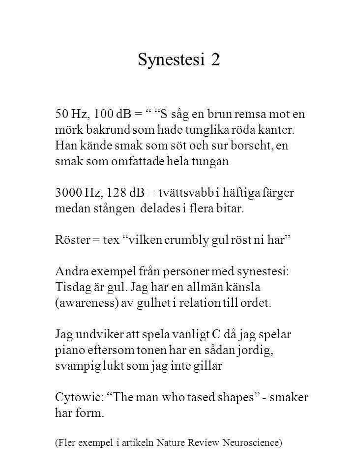 Synestesi 2