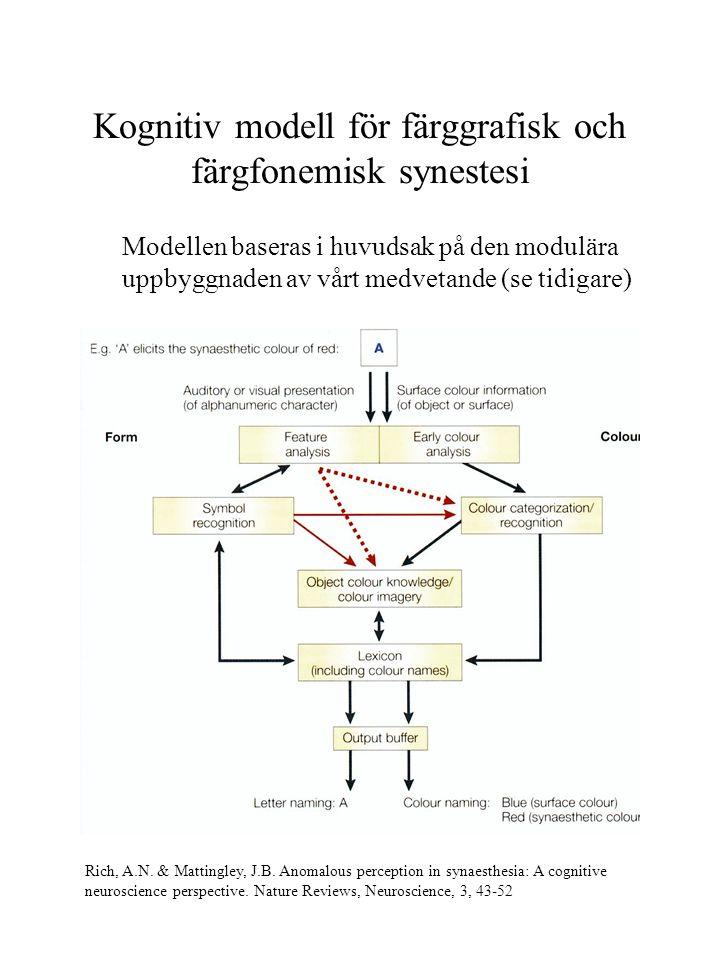 Kognitiv modell för färggrafisk och färgfonemisk synestesi