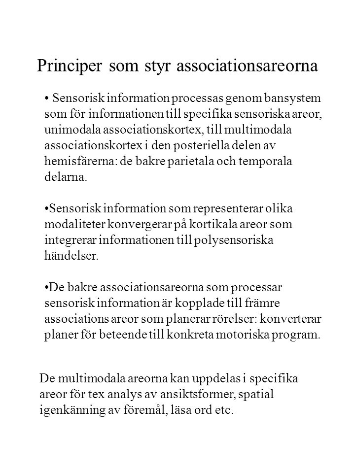 Principer som styr associationsareorna
