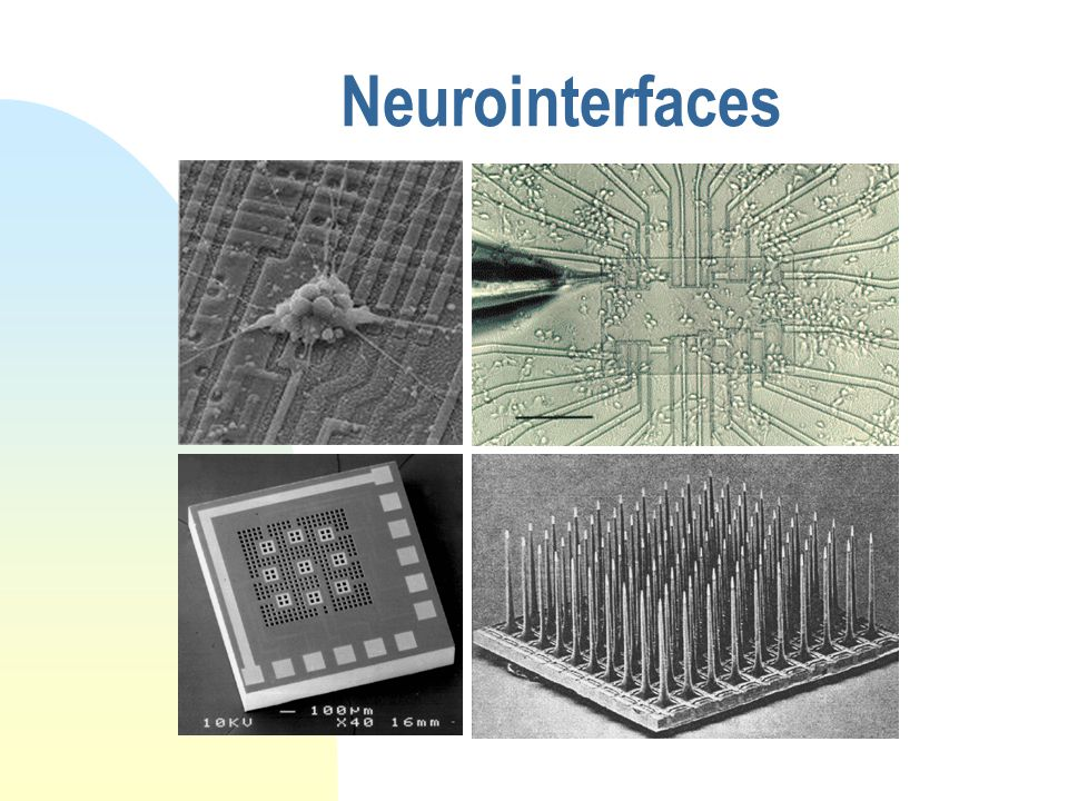 Neurointerfaces