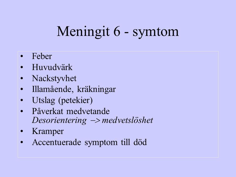 Meningit 6 - symtom Feber Huvudvärk Nackstyvhet Illamående, kräkningar