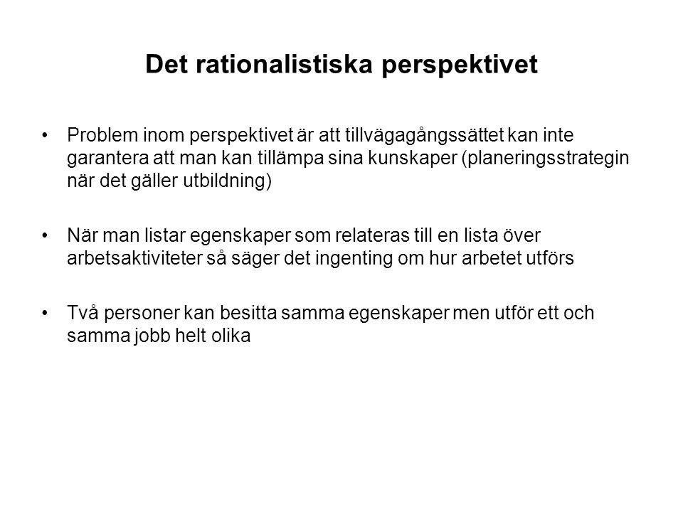 Det rationalistiska perspektivet