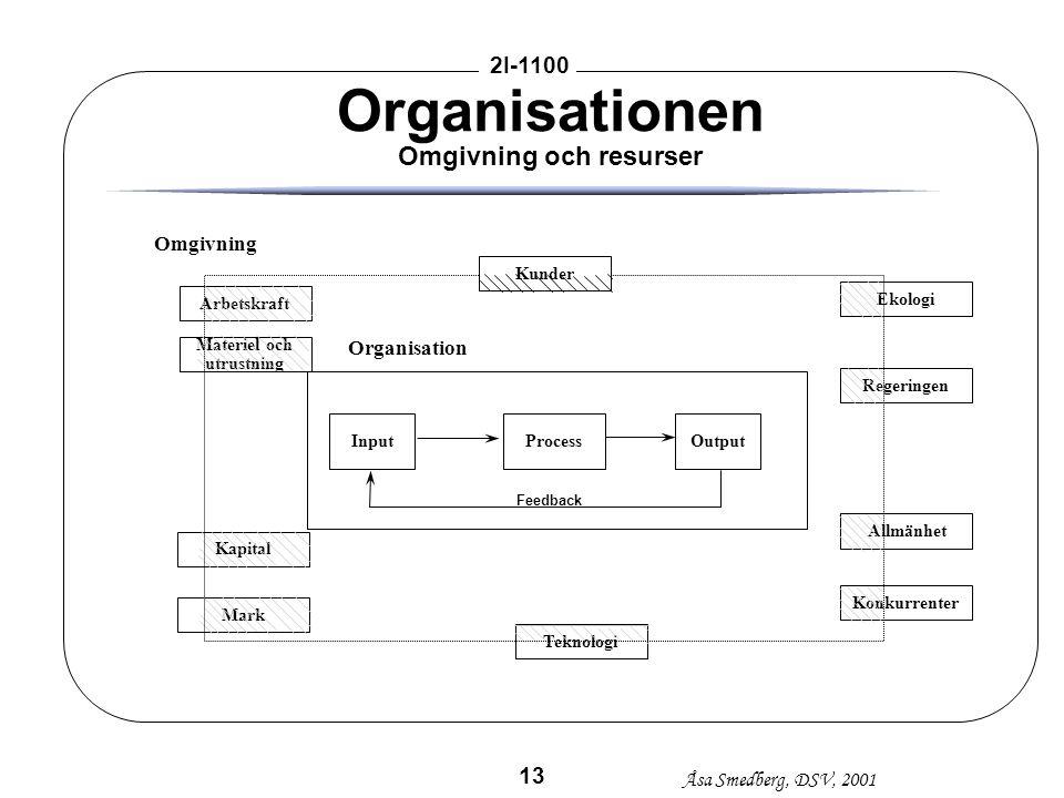 Organisationen Omgivning och resurser
