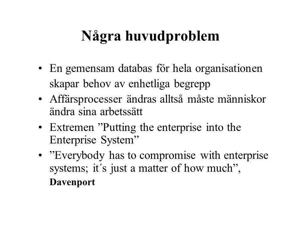 Några huvudproblem En gemensam databas för hela organisationen