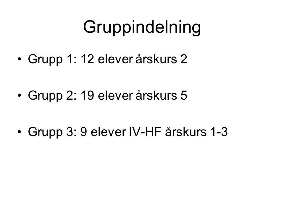 Gruppindelning Grupp 1: 12 elever årskurs 2
