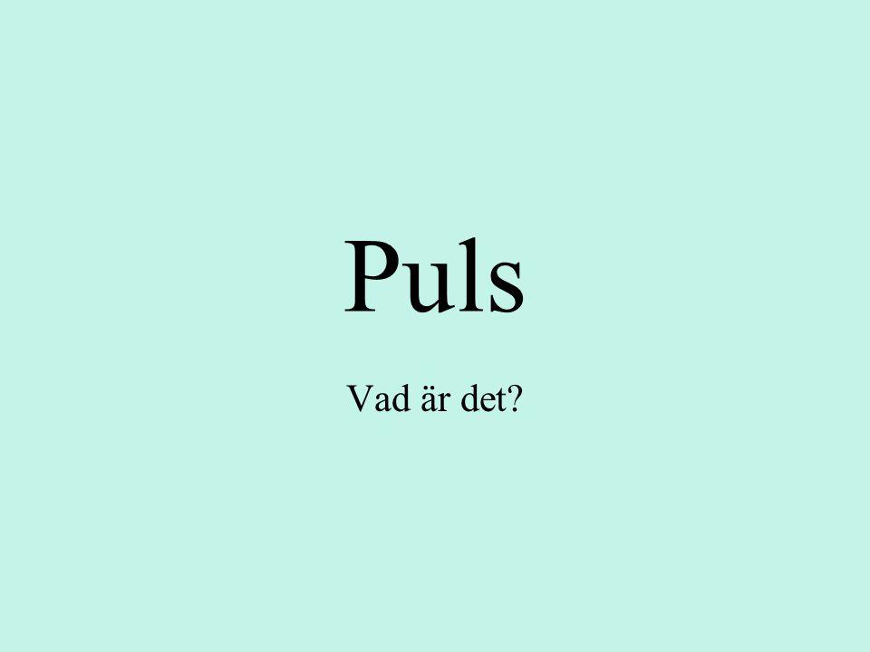 Puls Vad är det
