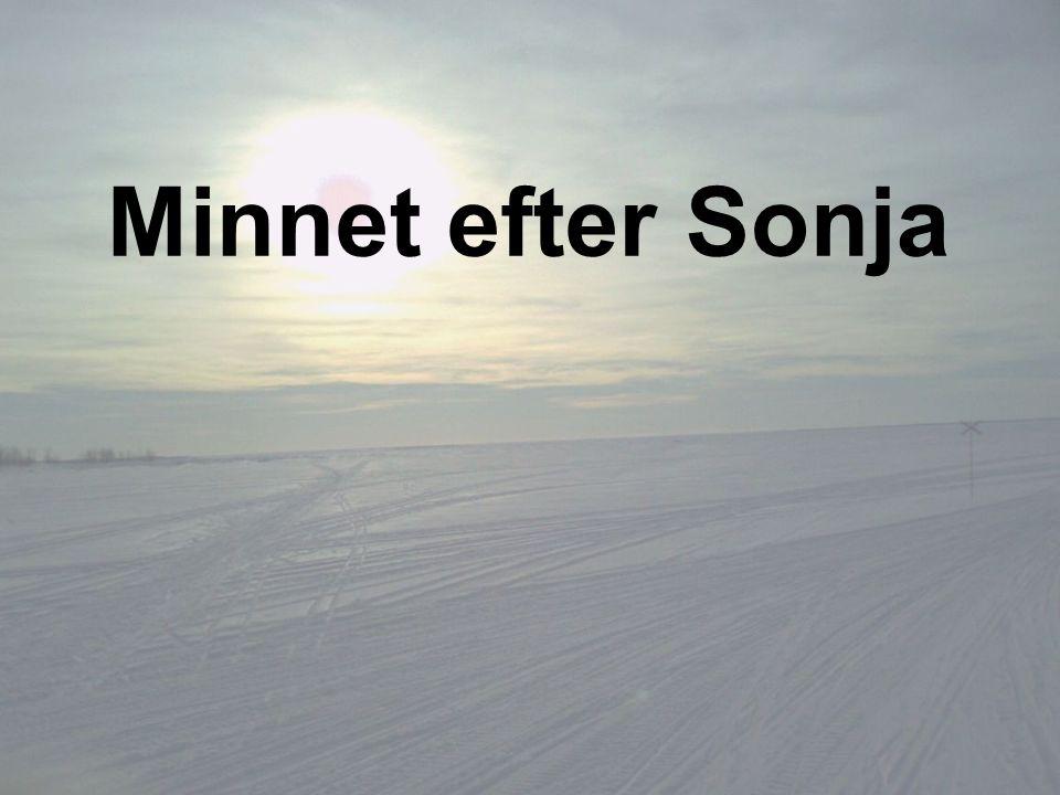 Minnet efter Sonja