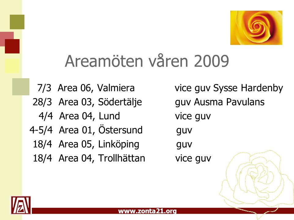 Areamöten våren 2009 28/3 Area 03, Södertälje guv Ausma Pavulans