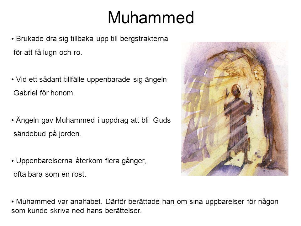 Muhammed Brukade dra sig tillbaka upp till bergstrakterna