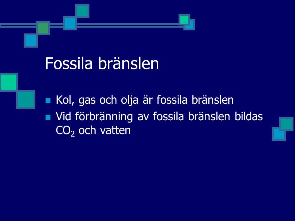 Fossila bränslen Kol, gas och olja är fossila bränslen