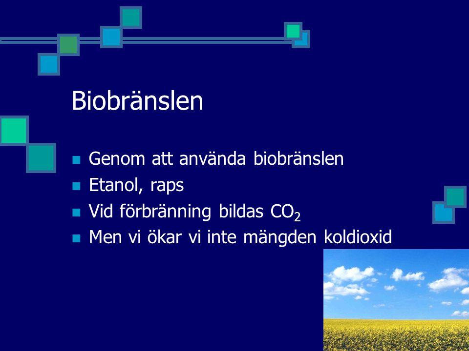Biobränslen Genom att använda biobränslen Etanol, raps