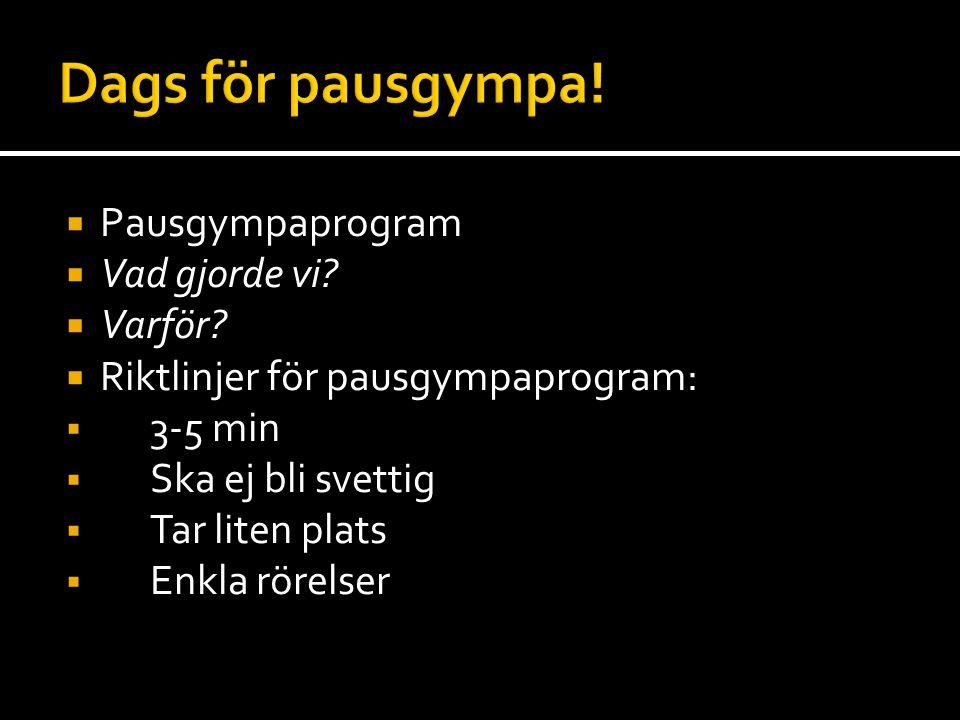 Dags för pausgympa! Pausgympaprogram Vad gjorde vi Varför