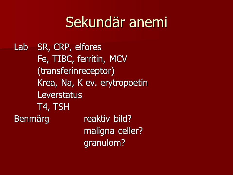 Sekundär anemi Lab SR, CRP, elfores Fe, TIBC, ferritin, MCV