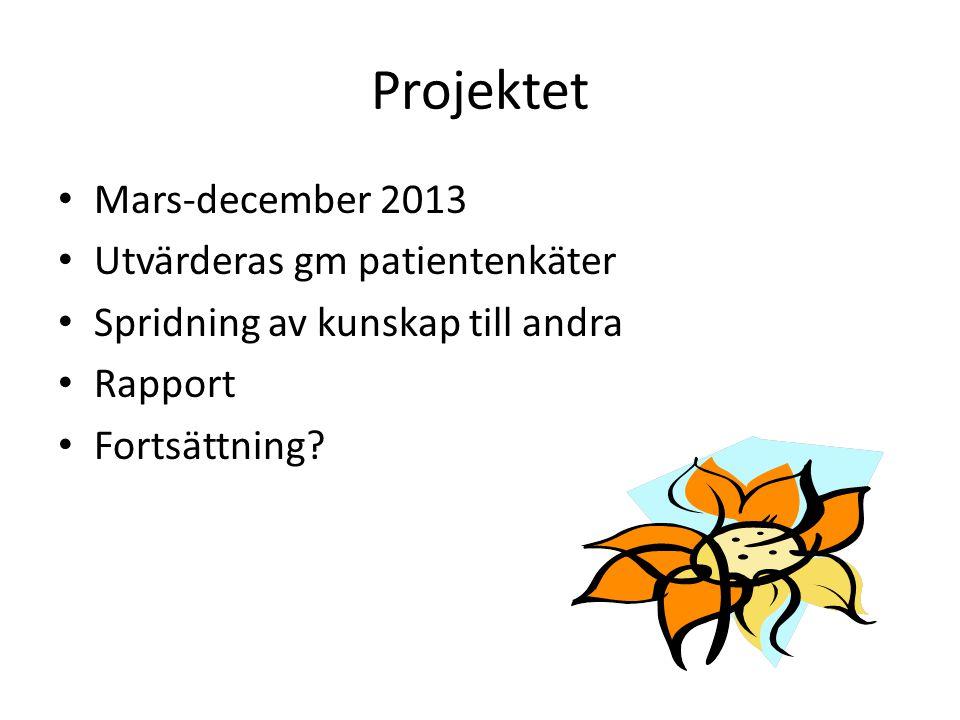 Projektet Mars-december 2013 Utvärderas gm patientenkäter
