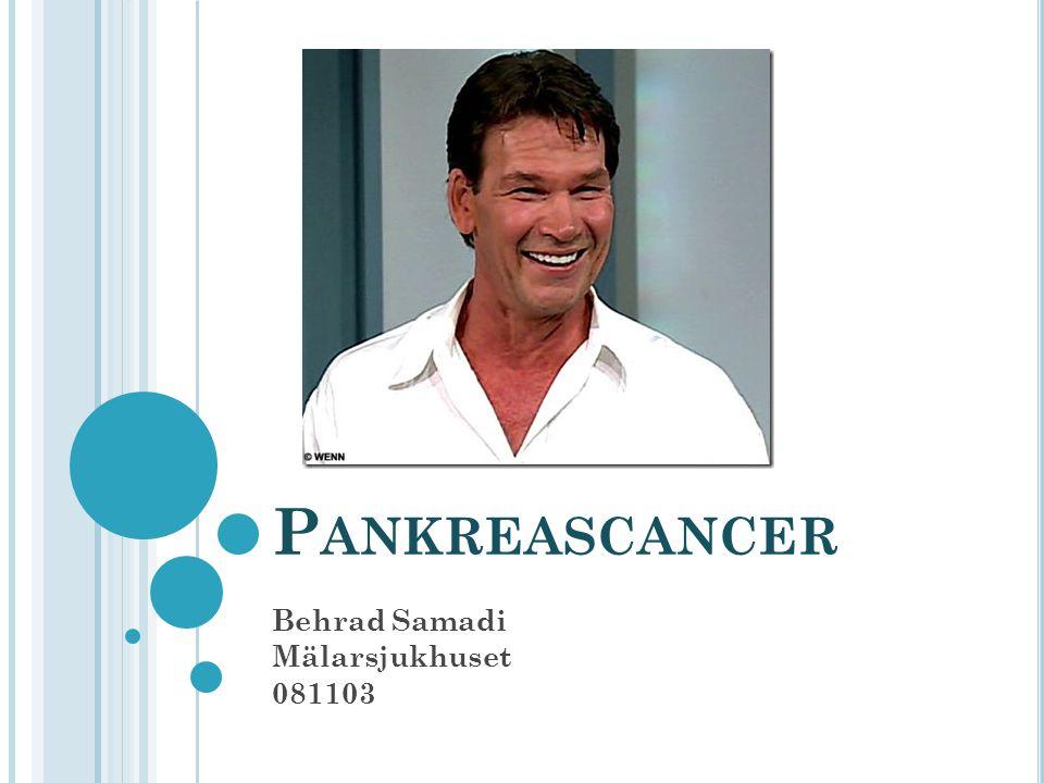 Behrad Samadi Mälarsjukhuset 081103