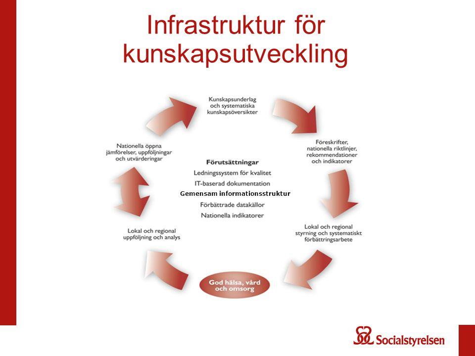 Infrastruktur för kunskapsutveckling