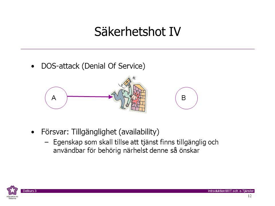 Säkerhetshot IV DOS-attack (Denial Of Service)
