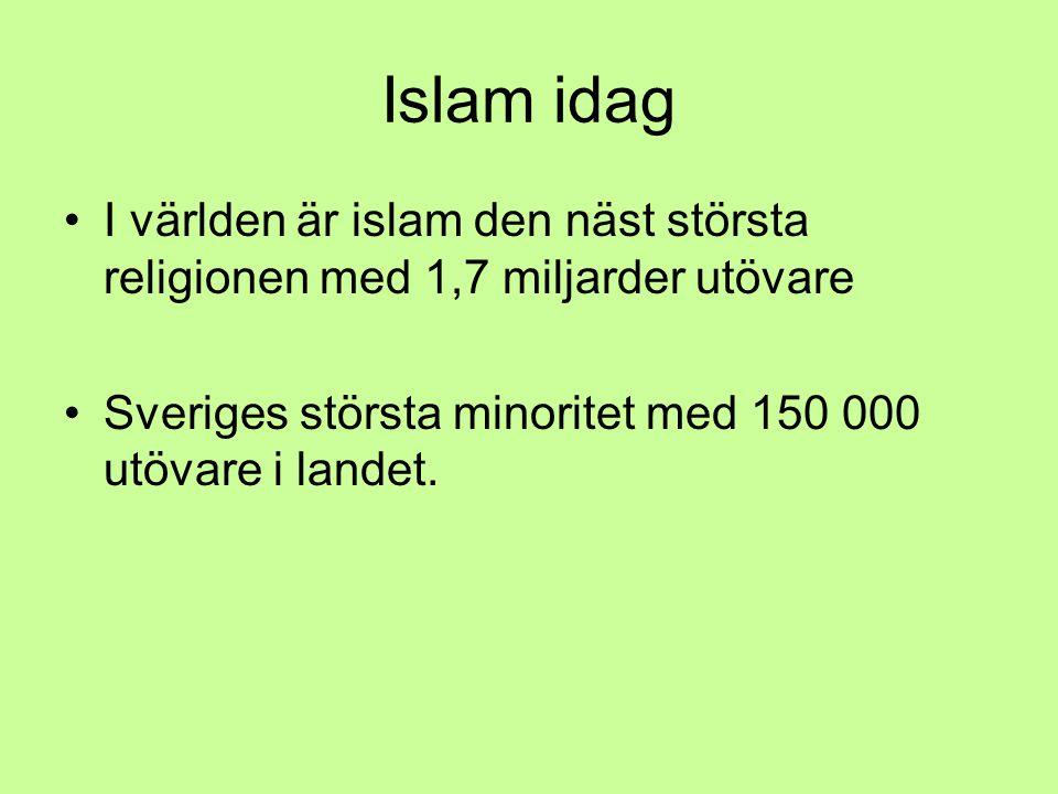 Islam idag I världen är islam den näst största religionen med 1,7 miljarder utövare.