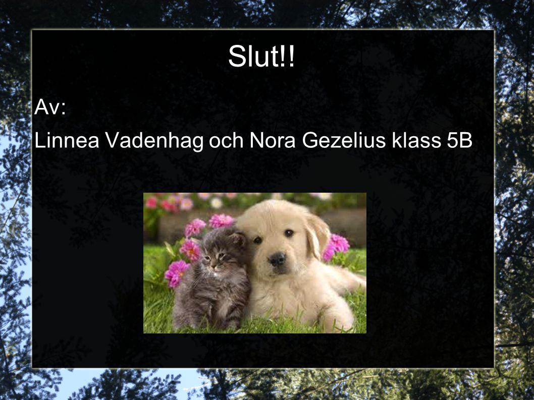 Slut!! Av: Linnea Vadenhag och Nora Gezelius klass 5B
