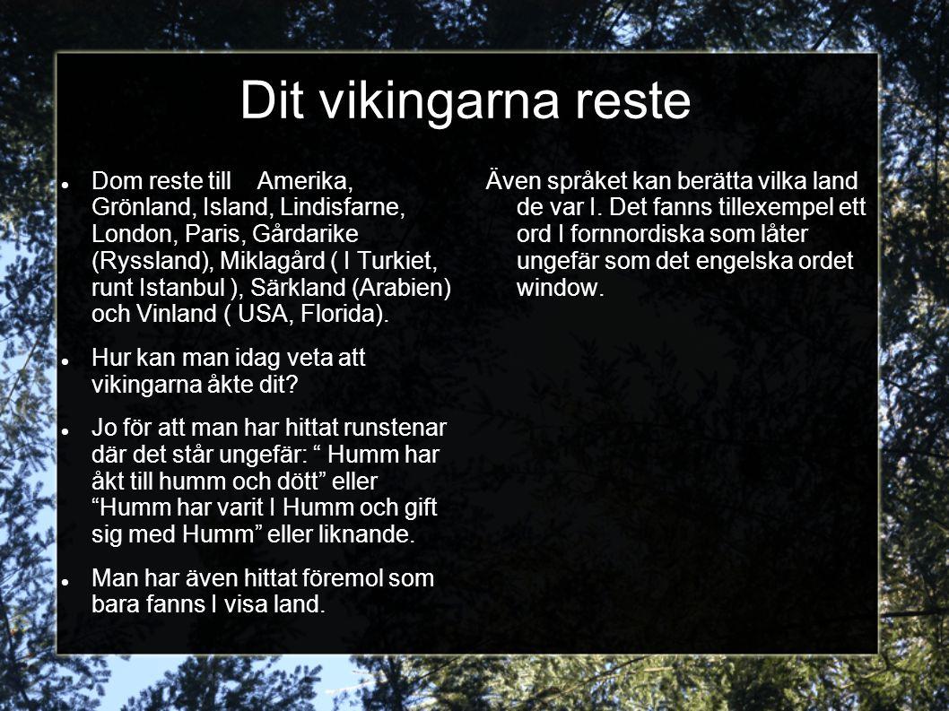 Dit vikingarna reste