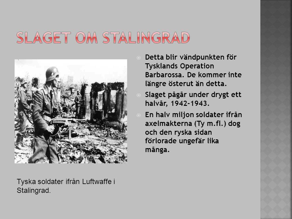 Slaget om stalingrad Detta blir vändpunkten för Tysklands Operation Barbarossa. De kommer inte längre österut än detta.