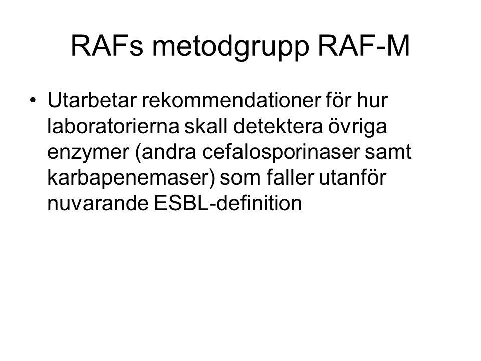 RAFs metodgrupp RAF-M