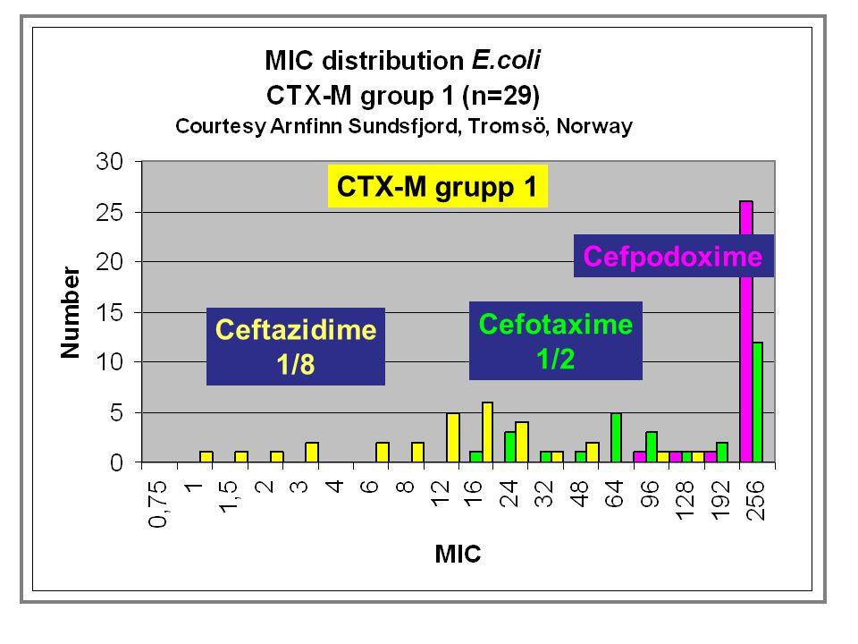 CTX-M grupp 1 Cefpodoxime Cefotaxime 1/2 Ceftazidime 1/8