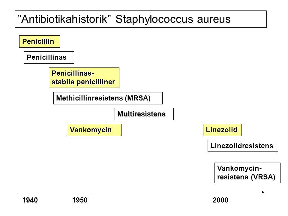 Antibiotikahistorik Staphylococcus aureus