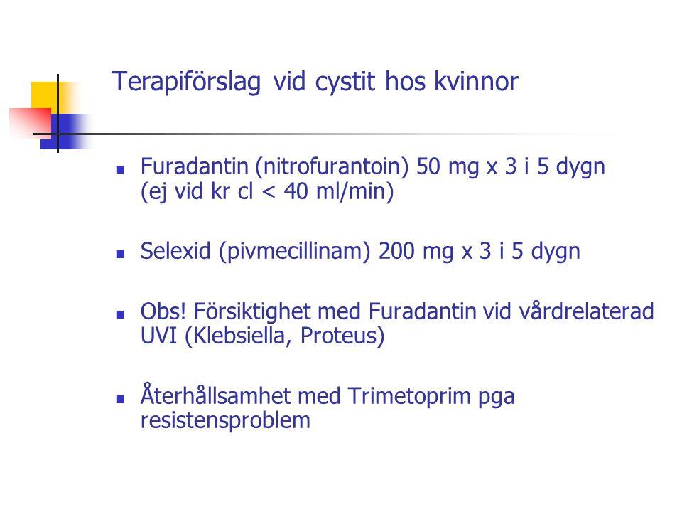 Terapiförslag vid cystit hos kvinnor