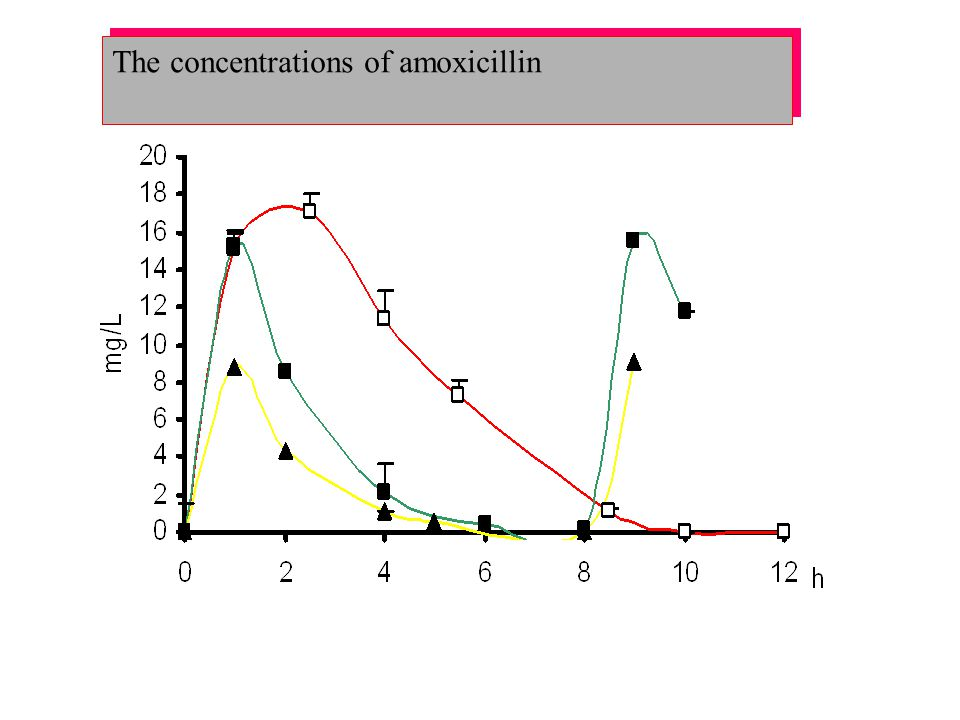 The concentrations of amoxicillin