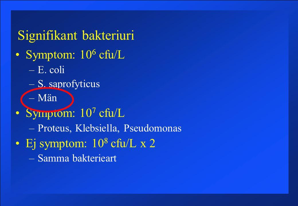 Signifikant bakteriuri