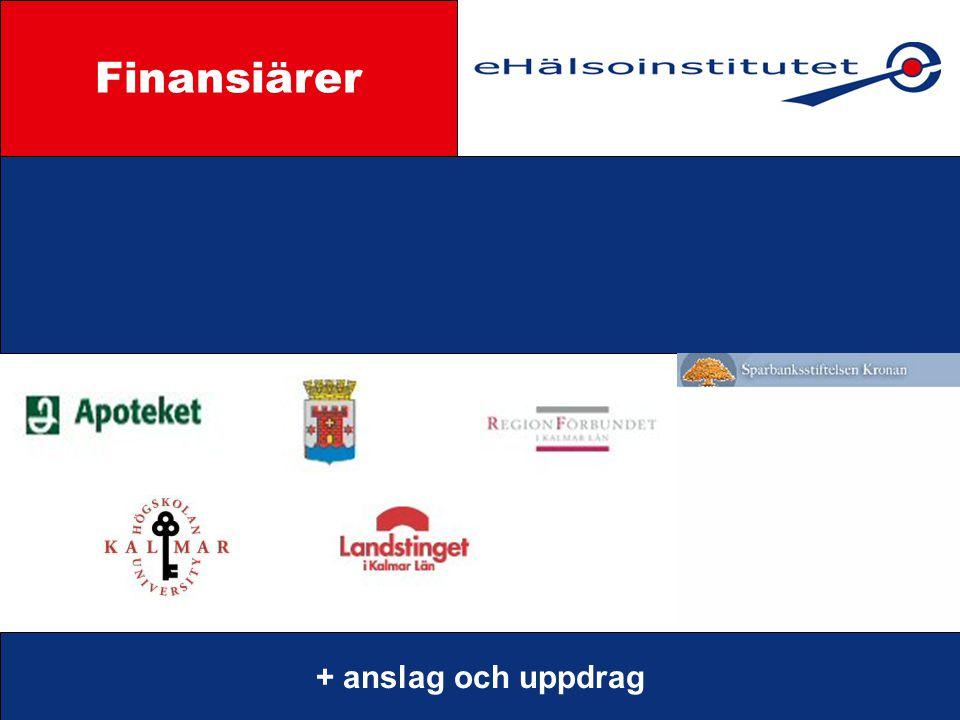 Finansiärer Styrgrupp + anslag och uppdrag