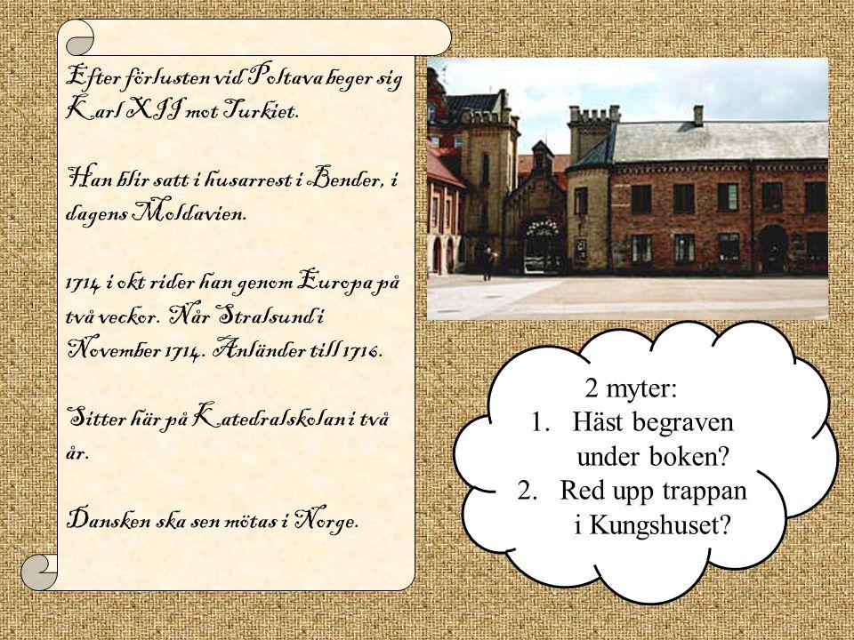 Efter förlusten vid Poltava beger sig Karl XII mot Turkiet.