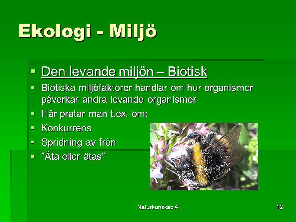 Ekologi - Miljö Den levande miljön – Biotisk