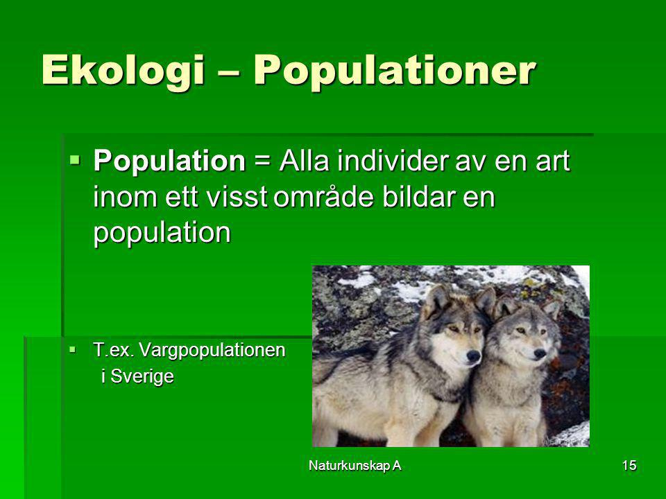 Ekologi – Populationer