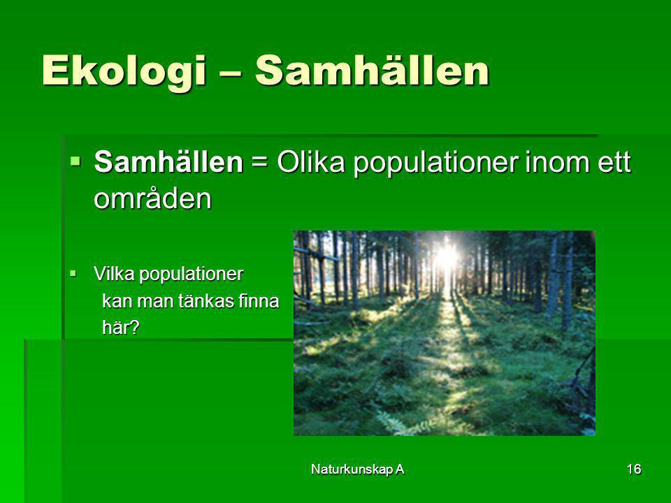 Ekologi – Samhällen Samhällen = Olika populationer inom ett områden