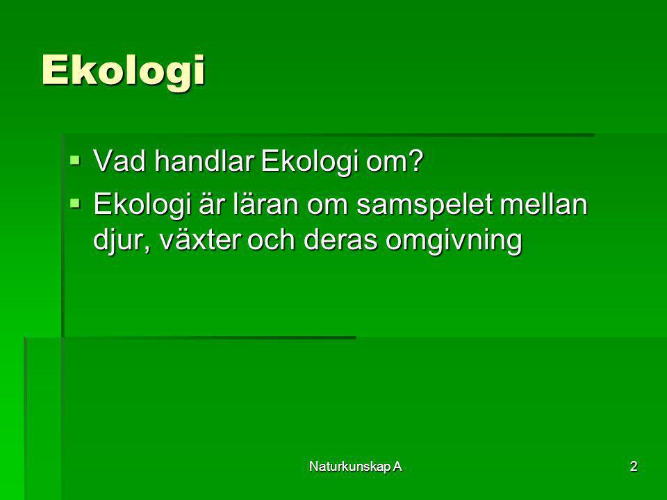 Ekologi Vad handlar Ekologi om