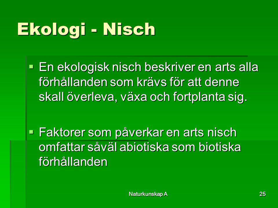 Ekologi - Nisch En ekologisk nisch beskriver en arts alla förhållanden som krävs för att denne skall överleva, växa och fortplanta sig.