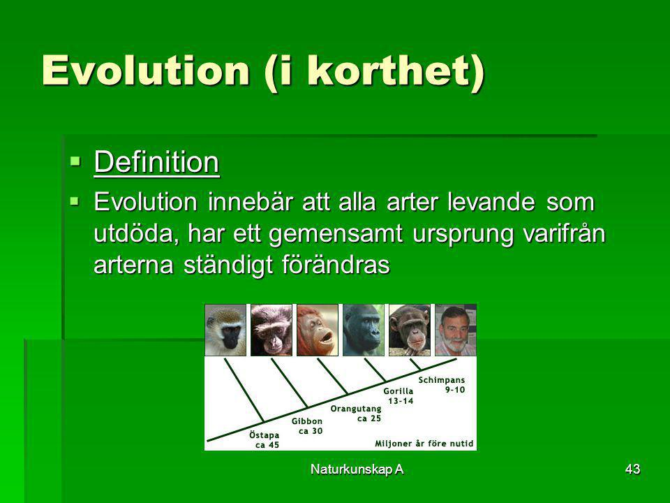 Evolution (i korthet) Definition