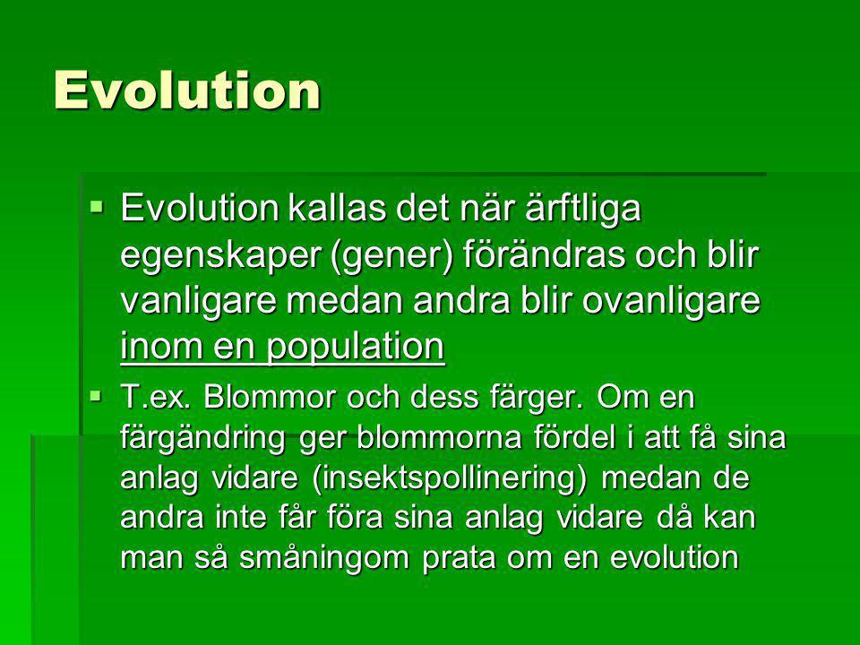 Evolution Evolution kallas det när ärftliga egenskaper (gener) förändras och blir vanligare medan andra blir ovanligare inom en population.