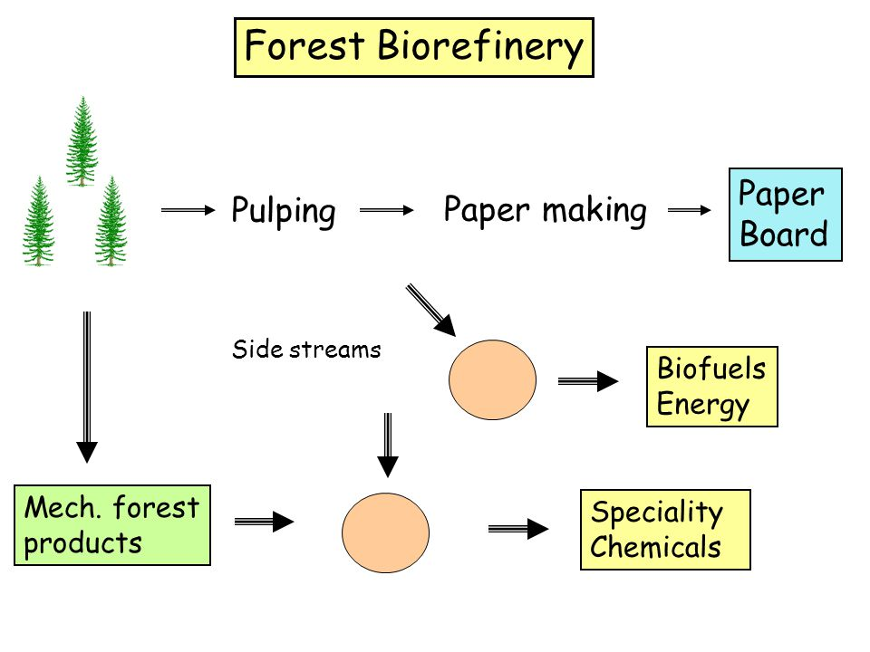 Forest Biorefinery Paper Board Pulping Paper making Biofuels Energy