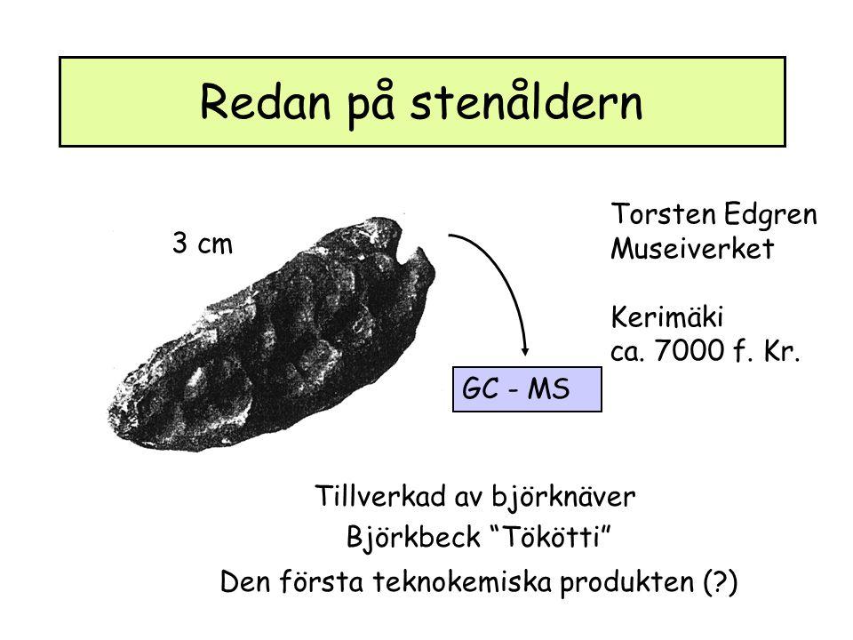 Redan på stenåldern Torsten Edgren Museiverket 3 cm Kerimäki