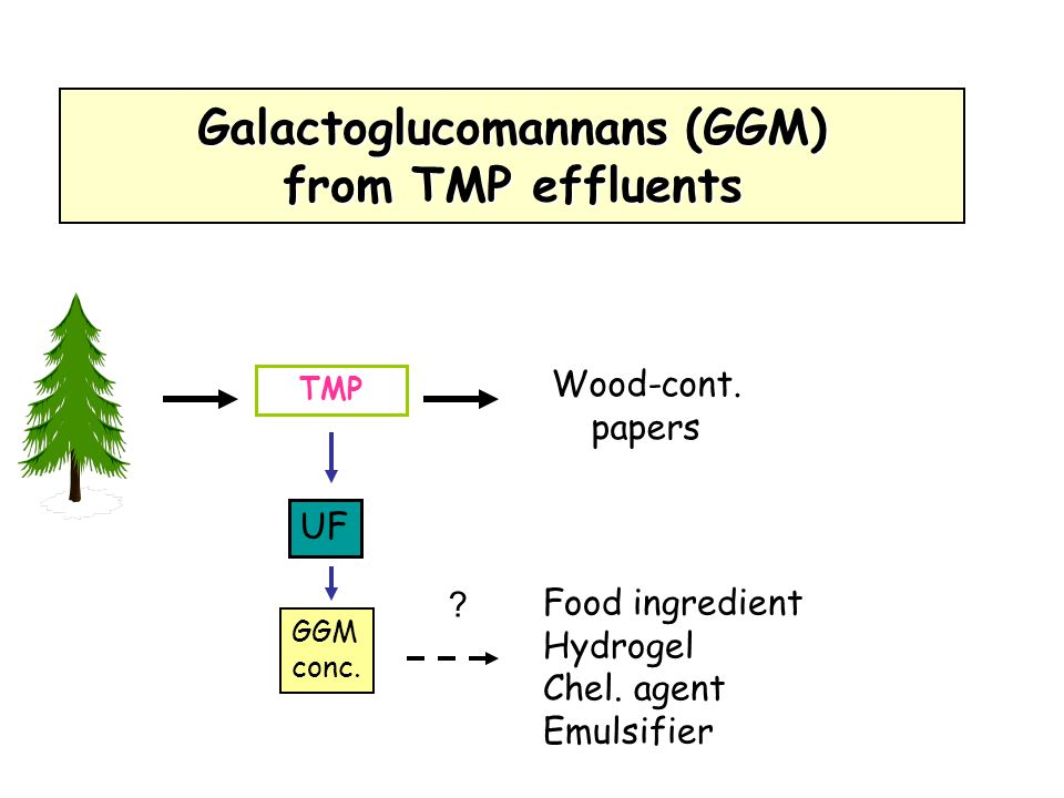Galactoglucomannans (GGM) from TMP effluents