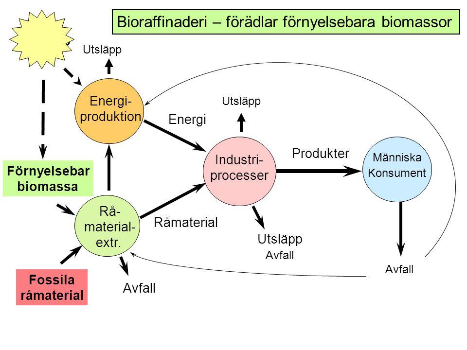 Bioraffinaderi – förädlar förnyelsebara biomassor Aurinko