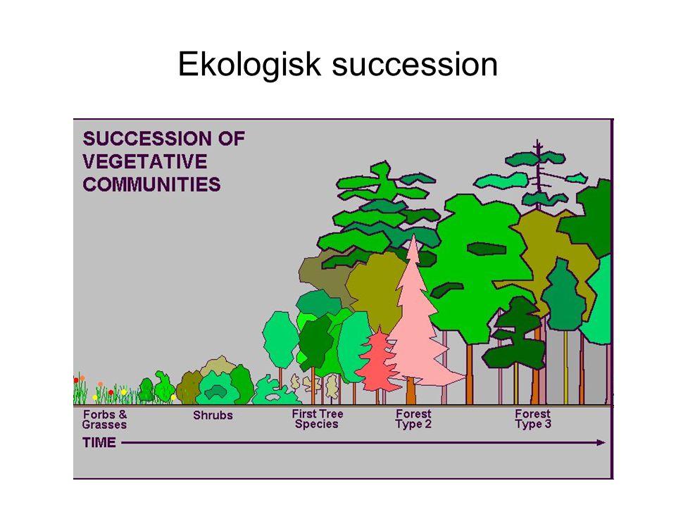 Ekologisk succession