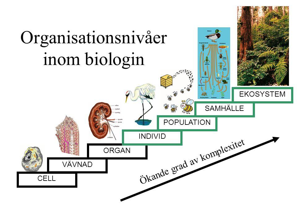 Organisationsnivåer inom biologin