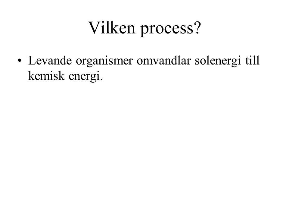 Vilken process Levande organismer omvandlar solenergi till kemisk energi.