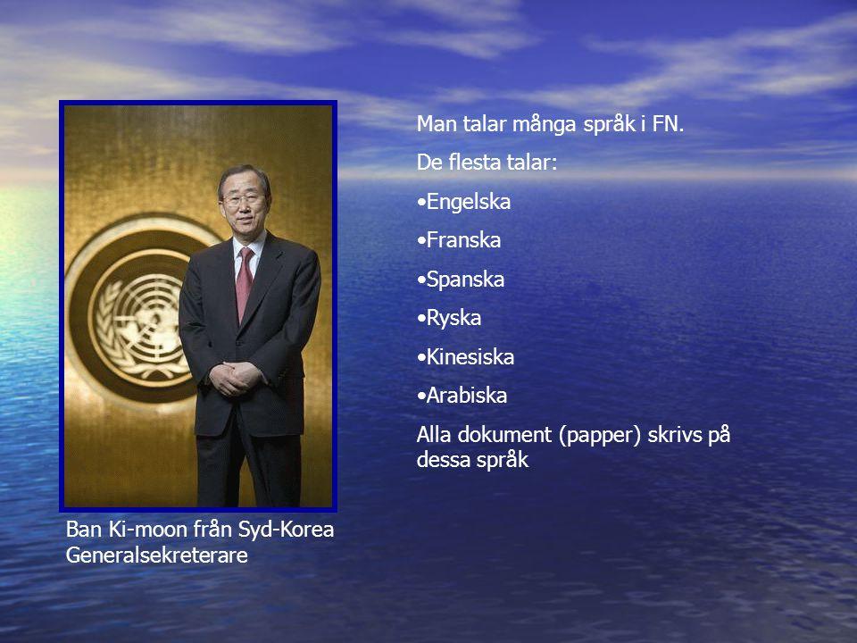 Man talar många språk i FN.