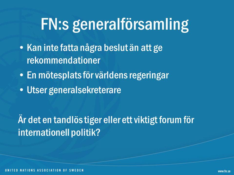 FN:s generalförsamling