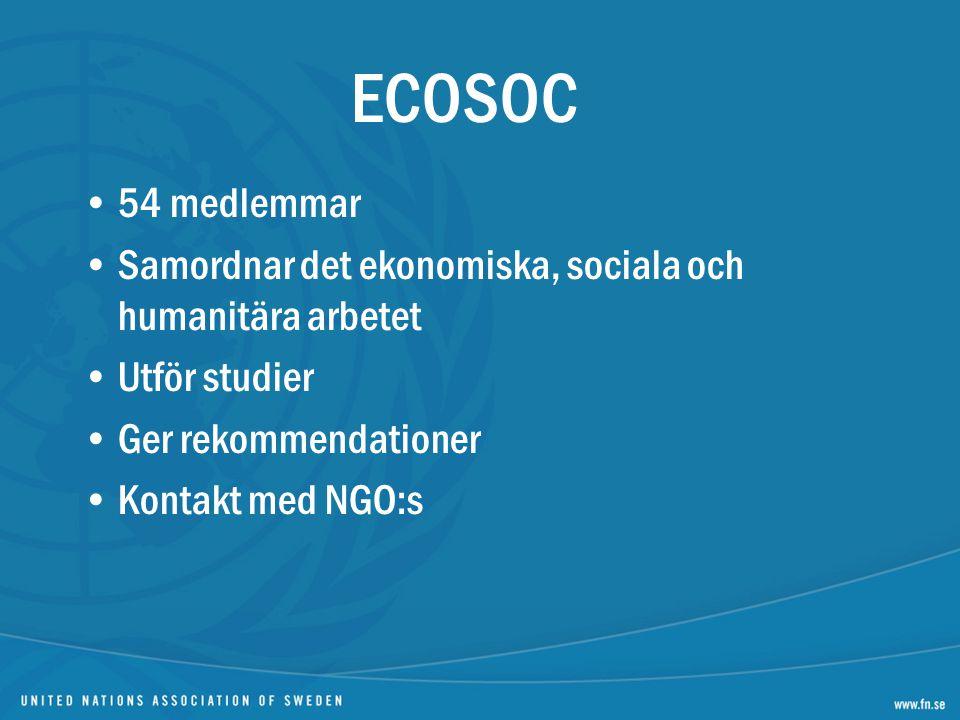 ECOSOC 54 medlemmar. Samordnar det ekonomiska, sociala och humanitära arbetet. Utför studier. Ger rekommendationer.